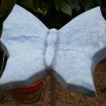 Blauwe vlinder, Azul Macauba