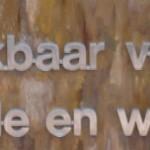 RVS letters op versteend hout